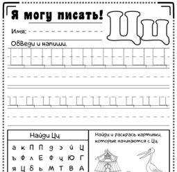 Прописи для дошкольников - буква Ц