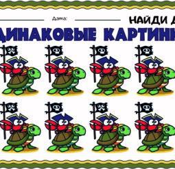 Одинаковые картинки - черепаха