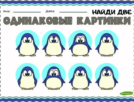 Одинаковые картинки - пингвин