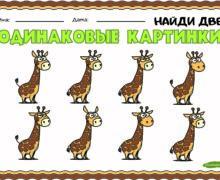 Одинаковые картинки - жираф