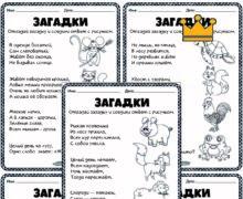 Загадки о животных. Серия 5 листов