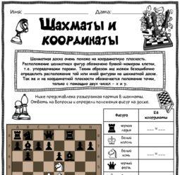Шахматы и координаты