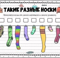 Такие разные носки