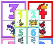Карточки с цифрами от 0 до 10. Насекомые