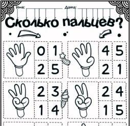 Сколько пальцев