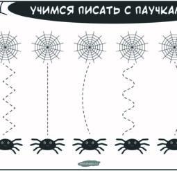 Учимся писать с паучками