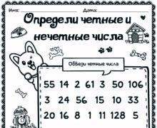 Определи чётные и нечётные номера
