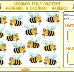 Сколько пчел смотрит направо, сколько налево?