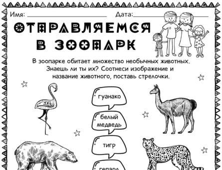 Отправляемся в зоопарк