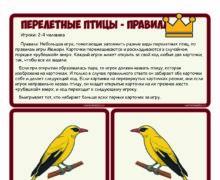 Перелетные птицы - мемори