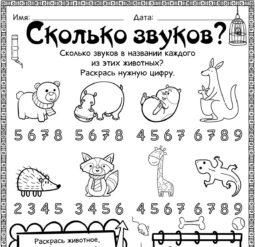 Сколько звуков в названиях животных