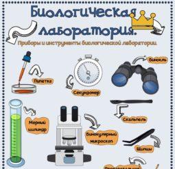 Биологическая лаборатория - плакат