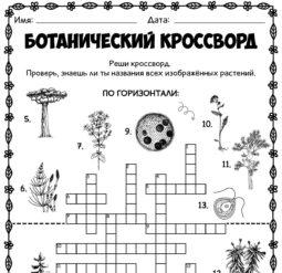Ботанический кроссворд
