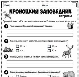Кроноцкий заповедник - вопросы