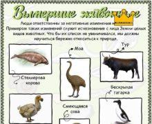 Вымершие животные - Плакат