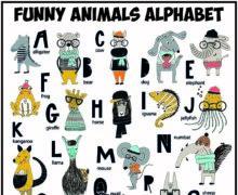 Английский алфавит со смешными животными