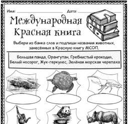 Международная Красная книга