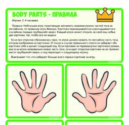 Body parts - memory game