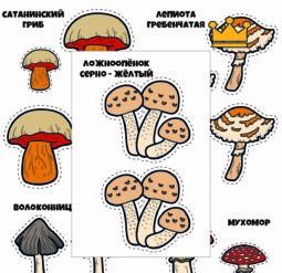 Ядовитые грибы для вырезания