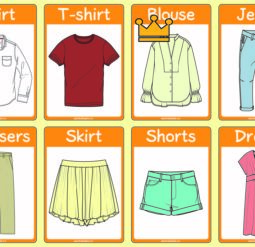 Clothing - flash cards