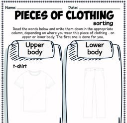 Pieces of clothing - sorting