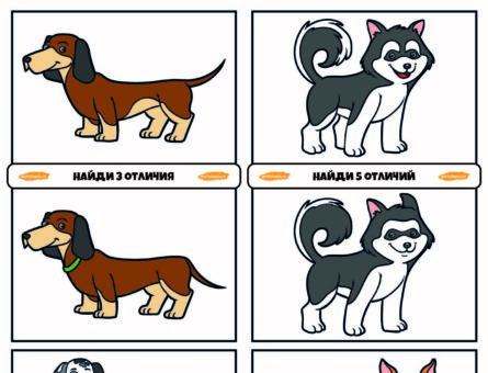 Найди отличия - Собачки