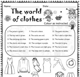 The world of clothes