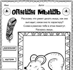 Опиши мышь