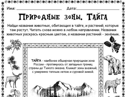 Природные зоны - Тайга